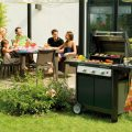 Barbecue (photo credit www.dibartolomeo.it)